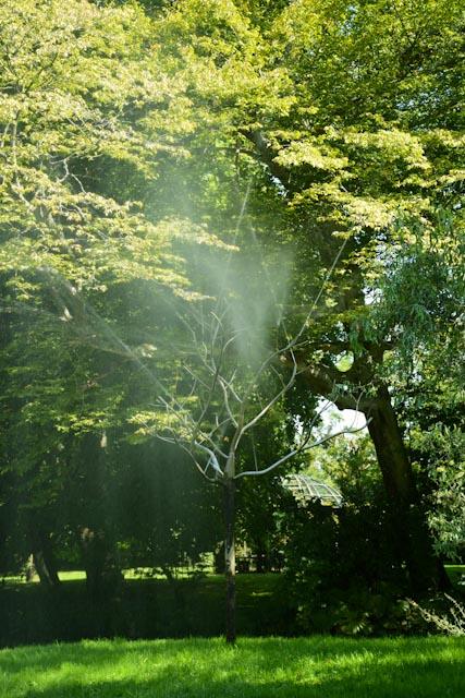 Un drôle d'arbre métallique vaporise un brouillard rafraîchissant lorsque l'on passe à proximité.