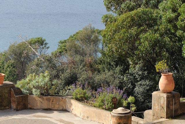 Au domaine du Rayol, jardin des Méditerranées, la terrasse avec vue sur la baie.