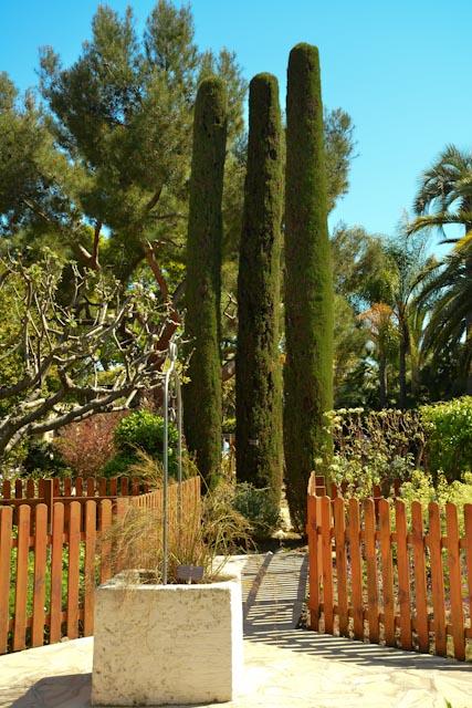 Au centre, trois cyprès longilignes marquent l'entrée du jardin méditerranéen entouré d'une barrière en bois.