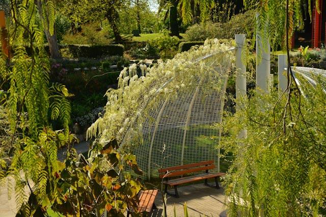 Une structure métallique en arc de cercle ombrage un banc. Elle est recouverte de plantes grimpantes.