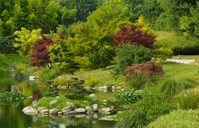 Vue générale du jardin du Dragon au coeur de la Bambouseraie en Cévennes