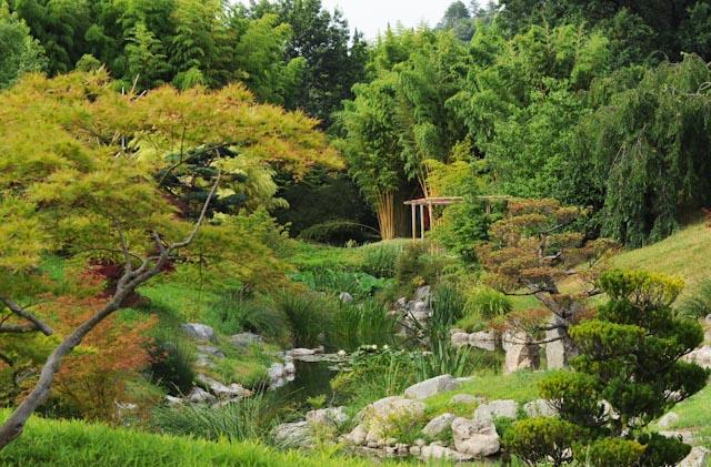 Jardin du dragon serti dans un écrin de bambous, au coeur de la Bambouseraie en Cévennes