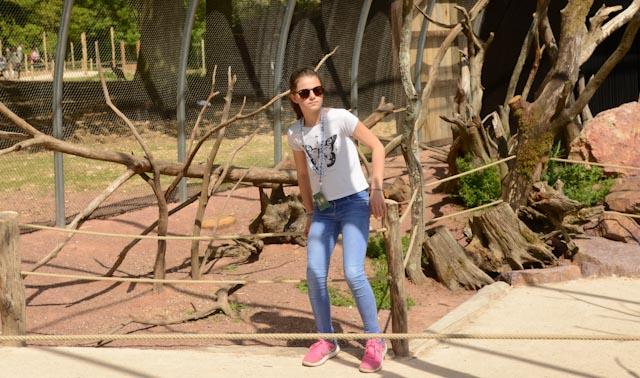 adolescente dans la volière australienne où l'on déambule parmi les animaux.