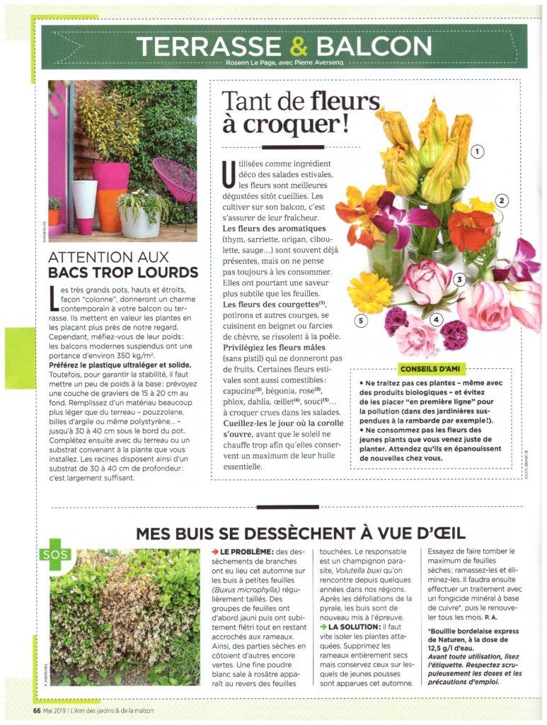 Exemple de page sur la terrasse et le balcon du cahier du jardinier de l'Ami des jardins.