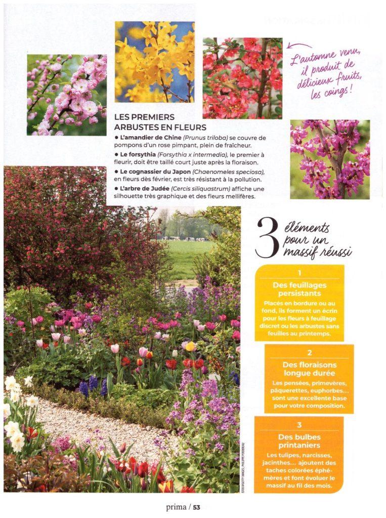 Article PRIMA avril 2019 - Les fleurs de printemps page 02