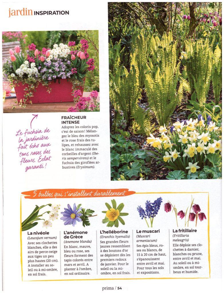 Article PRIMA avril 2019 - Les fleurs de printemps page 03