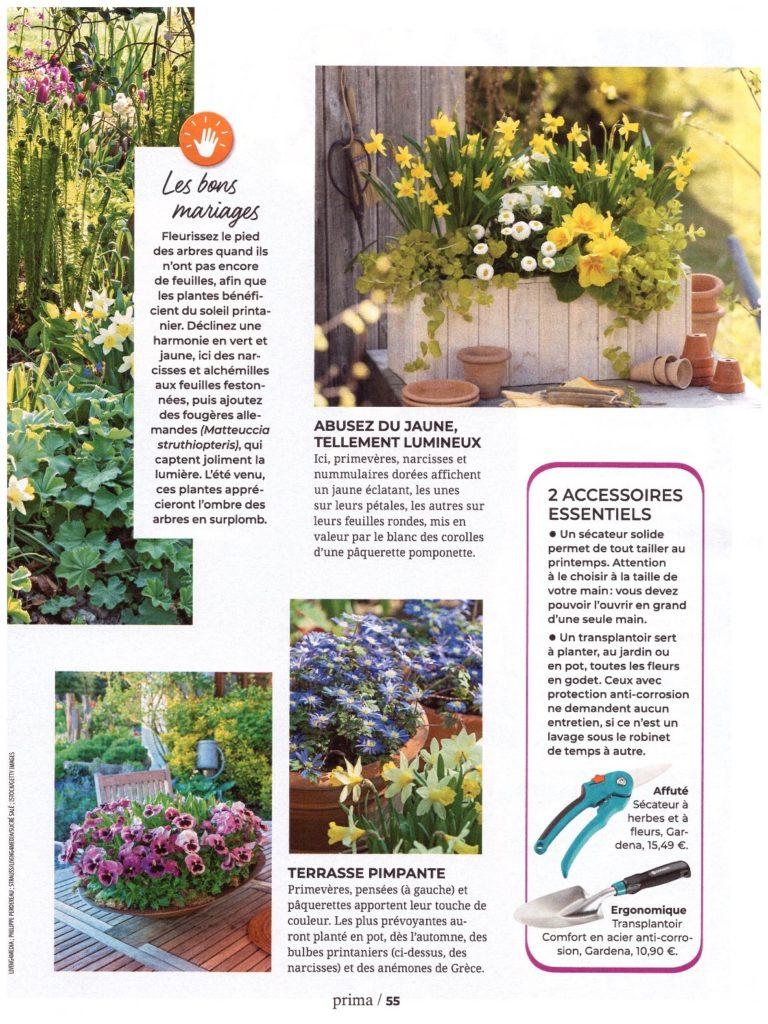 Article PRIMA avril 2019 - Les fleurs de printemps page 04